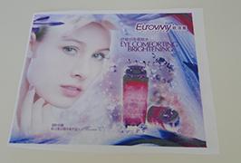 Vlaggendoek vaandel gedrukt door Eco-solventprinter van 1,6 m (5 voet) WER-ES160 4