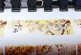 Zelfklevend vinyl, geprepareerd door een eco-solventprinter WER-ES1802 van 1,8 m (6 voet)